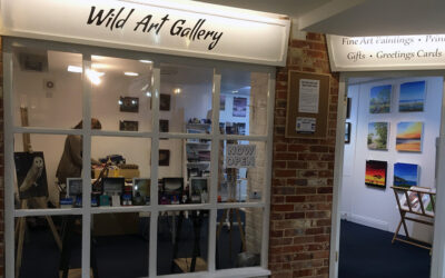 Wickham's Wild Art Gallery offers perch to Quirky Birds
