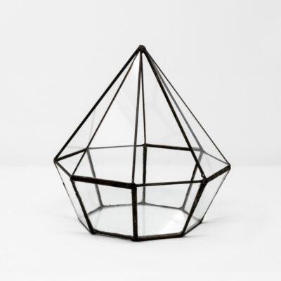 octagon terrarium 15cm