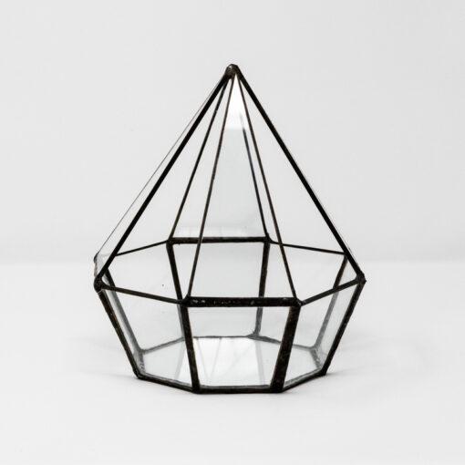 octagon terrarium 16cm