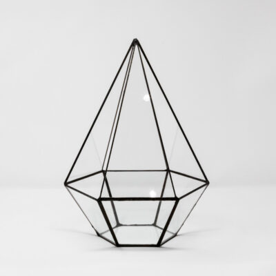 tall hexagonal terrarium no finial